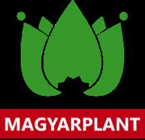 Компания MAGYARPLANT