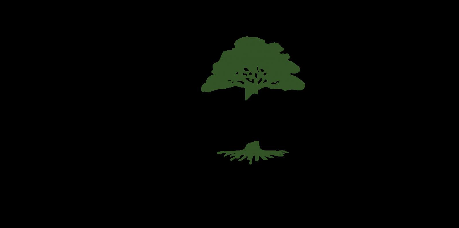 ООО «Здоровое дерево»